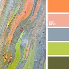 """dusty"" pink color, blue-grey color, color palette for home, color solution for home, coral-pink color, green shades, grey-blue color, lime color, olive color, orange shades, pale orange color, red color, rose-orange color."