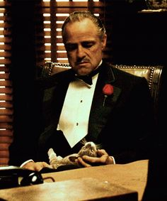 Don Vito Corleone with a cat on his lap in The Godfather