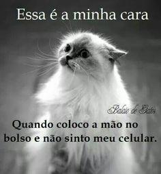 www.loucurasdeamornazonaleste.com.br