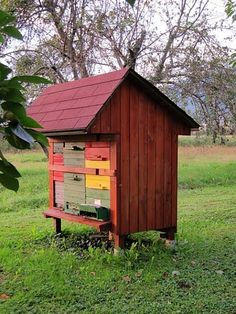 Lately there has been plenty of buzz over new types of beehives becoming available in the United States. It is no secret that many beekeepers are looking for better ways to keep bees, better ways to ensure the hive's long-term survival, and better ways to house hives, with improvements to their ergonomic design.. I was …