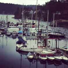 Gibsons, BC Sunshine Coast, British Columbia, The Good Place, Daddy, Earth, River, Island, Places, Outdoor