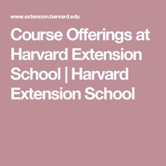 Course Offerings at Harvard Extension School | Harvard Extension School