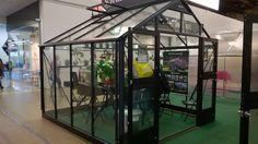 Lönntorp i Dalsvik -: Växthuset våren 2016