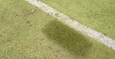 Synthetic Turf Pitch Field Testing in Uckfield  #Sports #Field...