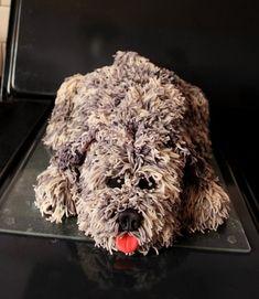 Puppy / Dog Marzipan Birthday Cake