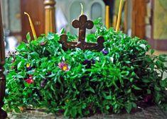 Plants, Blog, Spirituality, Spiritual, Planters, Plant, Planting
