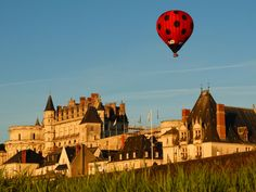 Château d'Amboise por Fotopedia Editorial Team