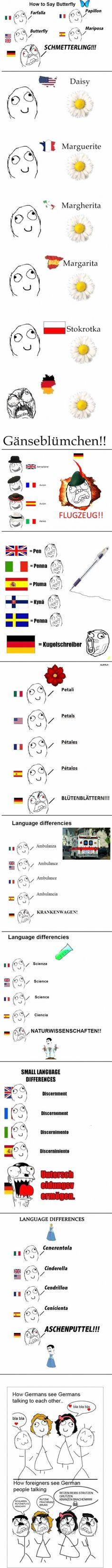 The German language. Not to be pc but the mustache on the cartoons is a bit much for me.