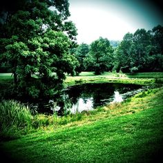 Serene pond surrounded by evergreen trees.   Instacanv.as Photo by gregwolford