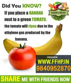 If you place a banana next to a green tomato, the tomato will ripen due to the ethylene gas produced by the banana.