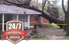 Indiana tree trimming offers 24/7 emergency tree service