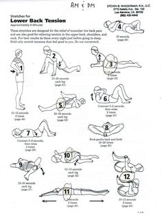 #Stretches for Lower #Back #Tension