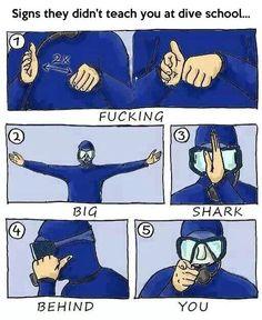 Funny Texts, Funny Jokes, Hilarious, Fun Funny, Morbider Humor, Scuba Diving Quotes, Scuba Diving Gear, Scuba Diving Equipment, Diving Suit