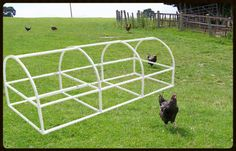 FREE plans of PVC pipe structures, greenhouse, cold frame, furniture fittings Chicken Coop Kit, Mobile Chicken Coop, Portable Chicken Coop, Chicken Runs, Chicken Tunnels, Pvc Greenhouse, Greenhouse Gardening, Chicken Tractors, Cold Frame