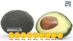 Madrid, Avocado, Fruit, Food, Lower Cholesterol, Minerals, Get Skinny, Lawyer, The Fruit