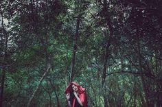 Perdida na floresta ensaio temático