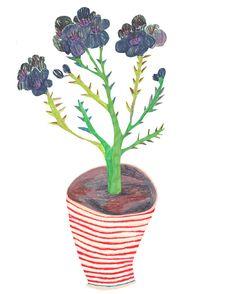 flowers - walkyland ek hou van die onsamehangendheid van die inkleurwerk