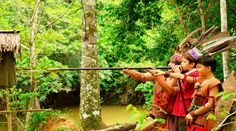 10 Things to do with Kids in Borneo