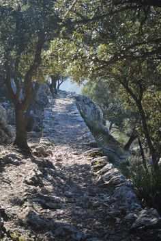 Un paseo por el Cami de S'Arxiduc (Valldemossa) / A walk on Cami de S'Arxiduc in Valldemossa   Amo Mallorca / I love Mallorca  #sinfiltro / #nofilter