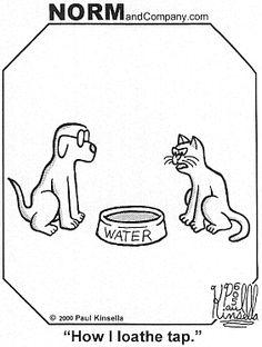funny cat cartoons funny dog cartoons