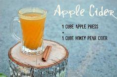 Scentsy Recipes using Apple Press Bar
