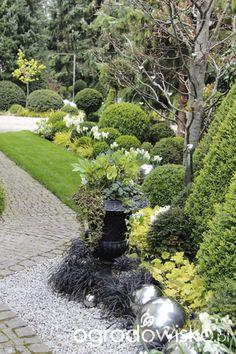 Not only the boxwood garden – part III – page 529 – Forum gardenowe – Og … - All About Balcony Boxwood Garden, Terrace Garden, Small Terrace, Love Garden, Summer Garden, Amazing Gardens, Beautiful Gardens, Garden Forum, Tulips Garden