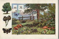 The pre ABC book. Prague Illustrated by Antonín Pospíšil. Alphabet Print, Woodland Creatures, Vintage Illustrations, Hedgehogs, Mice, Squirrel, Montessori, Flora, Graphics
