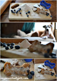 Chewy Sweet Potato and Blueberry Bone Bites Recipe - homemade dog treats.