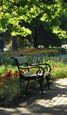 Urban Landscape, Landscape Photos, Landscape Photography, Beautiful Landscapes, Beautiful Gardens, Cast Iron Bench, Magical Forest, Pictures To Paint, Natural World