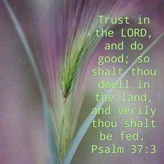 Psalm 37:3 KJV