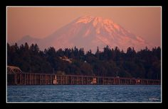 The Medina is named after Medina, Washington, a rainy town just outside of Seattle.