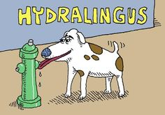 "The Classics Library on Twitter: ""Hydralingus. http://t.co/Z88AkcK75P"""