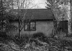 Take Back, Mother Nature, House Styles, Photography, Photograph, Fotografie, Photoshoot, Nature, Mother Earth