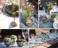Succulent centerpieces. Photos by Stephanie Williams via Green Wedding Shoes.