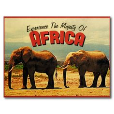>>>Best          	Africa Elephants Vintage Travel Postcards           	Africa Elephants Vintage Travel Postcards Yes I can say you are on right site we just collected best shopping store that haveReview          	Africa Elephants Vintage Travel Postcards Here a great deal...Cleck Hot Deals >>> http://www.zazzle.com/africa_elephants_vintage_travel_postcards-239338712010487383?rf=238627982471231924&zbar=1&tc=terrest