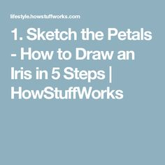 1. Sketch the Petals - How to Draw an Iris in 5 Steps | HowStuffWorks
