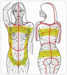 Manual lymphatic drainage is a gentle massage that encourages the natural drainage of the lymph. Manual lymphatic drainage is very essential. Ayurveda, Health And Beauty Tips, Health Tips, Health Remedies, Home Remedies, Lymphatic Massage, Lymphatic System, Alternative Health, Alternative Therapies