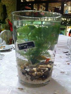 1000 id es sur le th me centre de table poissons sur for Deco poisson rouge