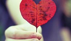 Quando o amor é sincero ele vem com um grande amigo, e quando a amizade é concreta ela é cheia de amor e carinho.