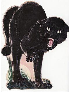 45 Ideas For Cats Angry Kitty Black Cat Tattoos, Creepy Cat, Frida Art, Super Cat, Angry Cat, Halloween Illustration, Cat Sleeping, Halloween Cat, Halloween Items