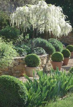 31 Awesome Mediterranean Garden Design Ideas For Your Backyard - Garden Back Gardens, Small Gardens, Formal Gardens, Outdoor Gardens, Mediterranean Garden Design, The Secret Garden, Garden Cottage, Garden Living, White Gardens