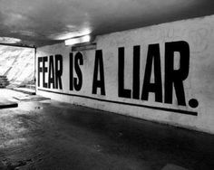 Fear is a liar, you are being robbed.  www.barbarawilber.com  Stress, Anxiety, Fear (Thieves of satisfactions, dreams and joy)