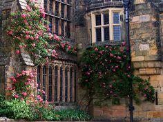 Haddon Hall, Derbyshire, United Kingdom  photo by UGArdener