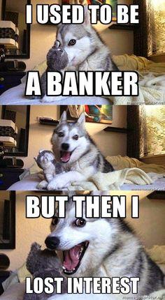 Die 14 besten Pun Dog Witze