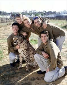 NSYNC with a cheetah?