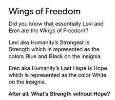 Strength and hope, Levj and Eren, wings of freedom. Ereri