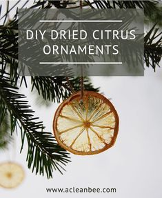 Dried citrus DIY Christmas ornaments for the tree are an eco-friendly way to decorate! Dehydrated fruit is beautiful, inexpensive, and compostable. Natural Christmas Ornaments, Easy Christmas Decorations, Simple Christmas, White Christmas, Christmas Holidays, Christmas Crafts, Homemade Christmas, Coastal Christmas, Felt Christmas