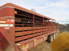 Bits,Spurs, Knives, The ranch — The bull catching. We loaded up for an all day...