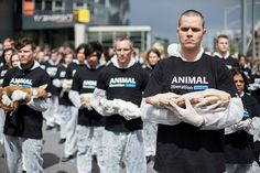Animal Liberation Victoria activists hold dead animals at Federation Square on October 1, 2013 in Melbourne, Australia.
