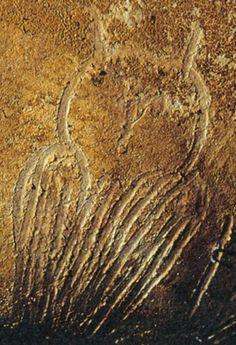 Préhistoire:grotte Chauvet